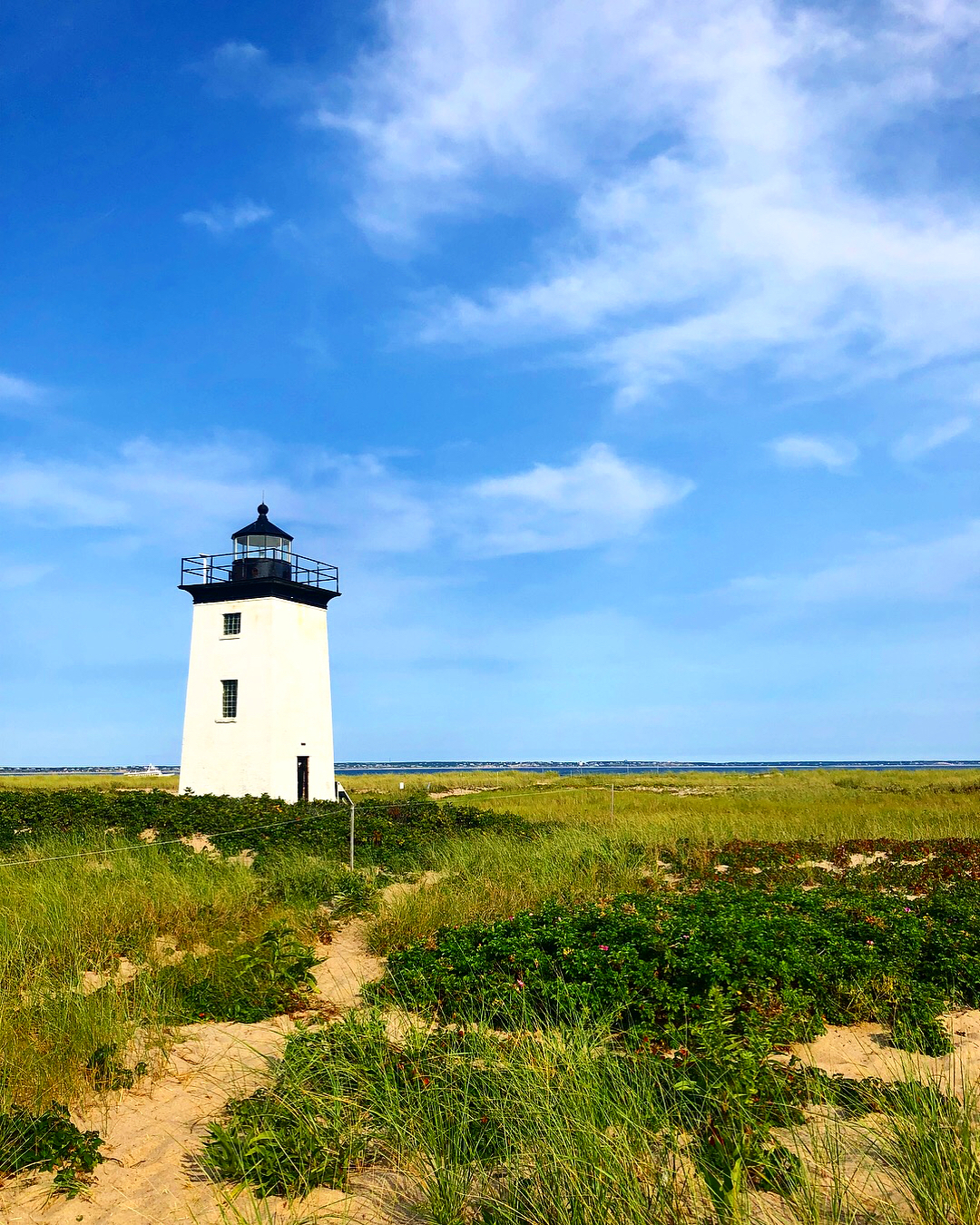 Long Point Cape Cod
