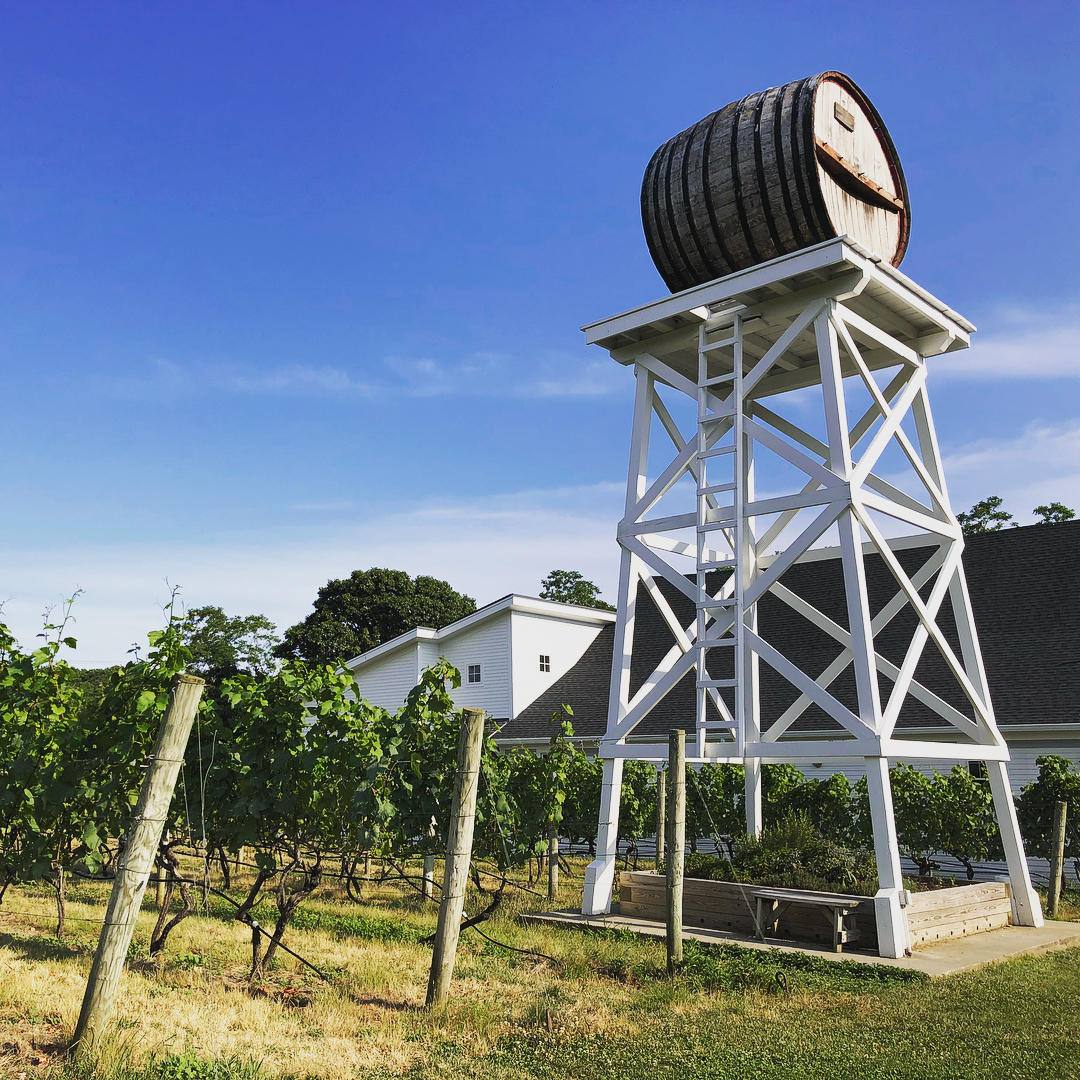 Truro Vineyards + South Hollow Spirits Cape Cod