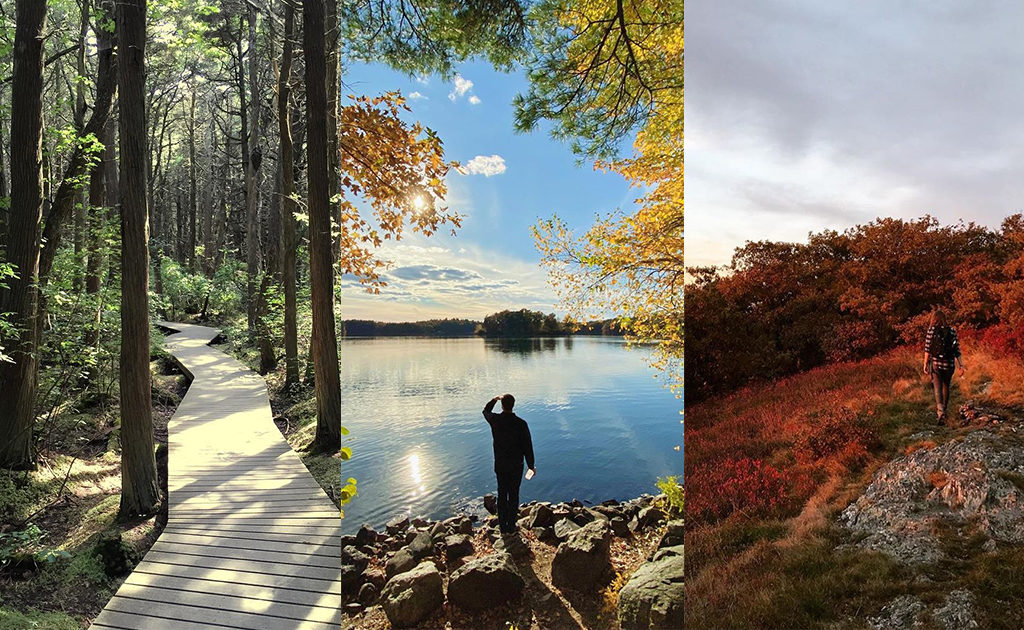 The 28 Most Popular Hikes in Massachusetts (According to Google and Instagram)