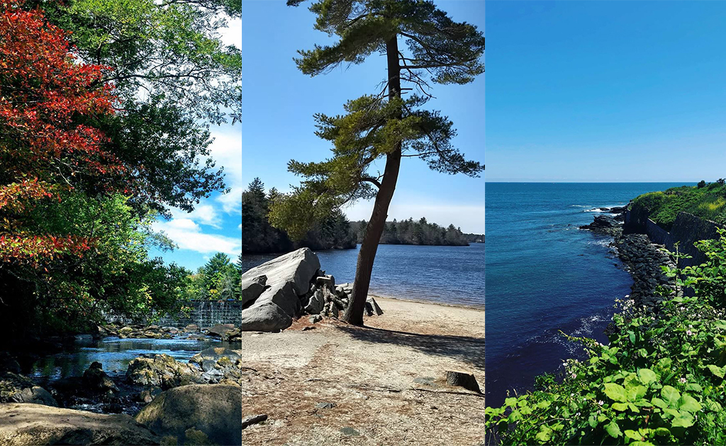 Rhode Island's 18 Most Popular Hikes (According to Google)